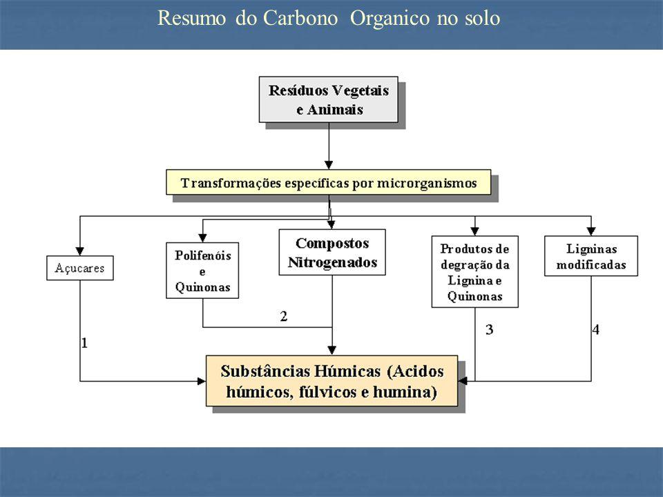 Resumo do Carbono Organico no solo