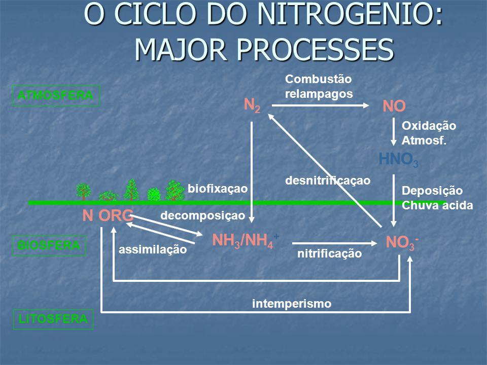 O CICLO DO NITROGENIO: MAJOR PROCESSES ATMOSFERA N2N2 NO HNO 3 NH 3 /NH 4 + NO 3 - N ORG BIOSFERA LITOSFERA Combustão relampagos Oxidação Atmosf.