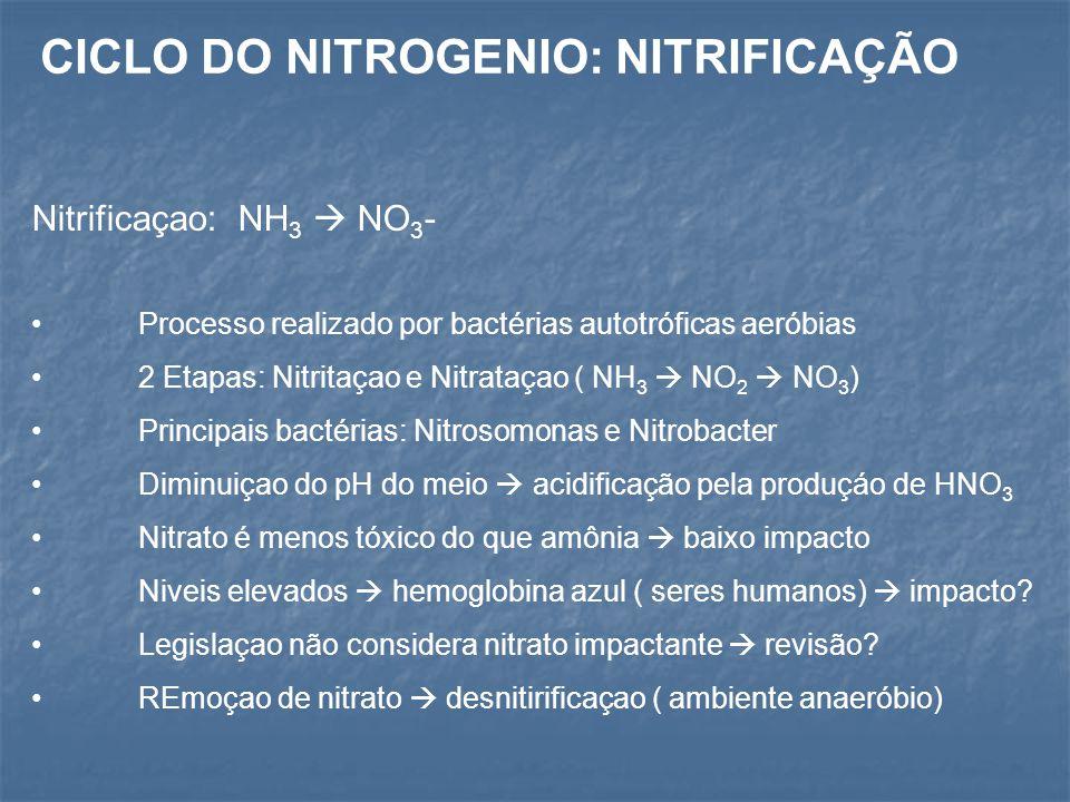 Nitrificaçao: NH 3  NO 3 - Processo realizado por bactérias autotróficas aeróbias 2 Etapas: Nitritaçao e Nitrataçao ( NH 3  NO 2  NO 3 ) Principais bactérias: Nitrosomonas e Nitrobacter Diminuiçao do pH do meio  acidificação pela produçáo de HNO 3 Nitrato é menos tóxico do que amônia  baixo impacto Niveis elevados  hemoglobina azul ( seres humanos)  impacto.
