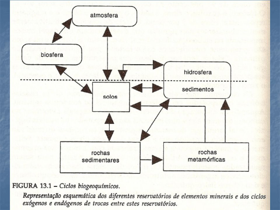 Matéria Orgânica SOLO-ÁGUA NH 3 AMONIA NO 3 NITRATO N 2 NITROGÊNIO NH 4 + AMôNIO CICLO DO NITROGENIO – PRINCIPAIS FORMAS E PROCESSOS DE TRANSFORMAÇAO DO N 1 23 4 5 6 1 – Amonificaçao – Mineralizaçao 2 – Nitrificaçao 3 – Desnitrificaçao 4 – Fixaçao 5 – Assimilaçao – Imobilizaçao 6 – equilibrio químico (pH dependente)