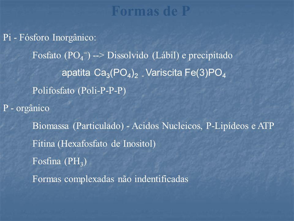 Formas de P Pi - Fósforo Inorgânico: Fosfato (PO 4 = ) --> Dissolvido (Lábil) e precipitado apatita Ca 3 (PO 4 ) 2 - Variscita Fe(3)PO 4 Polifosfato (Poli-P-P-P) P - orgânico Biomassa (Particulado) - Acidos Nucleicos, P-Lipídeos e ATP Fitina (Hexafosfato de Inositol) Fosfina (PH 3 ) Formas complexadas não indentificadas