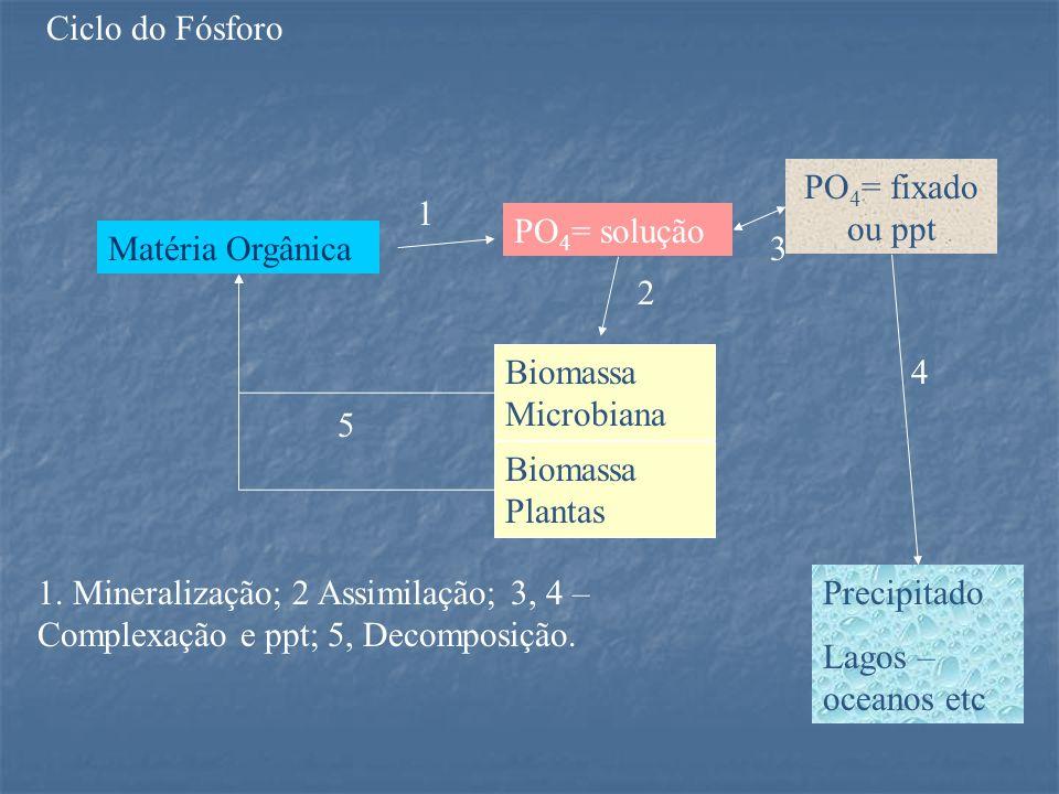 Matéria Orgânica PO 4 = solução PO 4 = fixado ou ppt Biomassa Microbiana Biomassa Plantas Precipitado Lagos – oceanos etc 1 2 3 4 5 1.