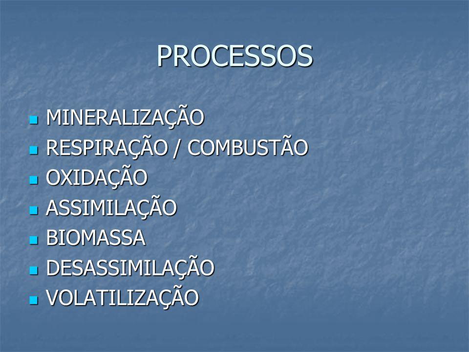 PROCESSOS MINERALIZAÇÃO MINERALIZAÇÃO RESPIRAÇÃO / COMBUSTÃO RESPIRAÇÃO / COMBUSTÃO OXIDAÇÃO OXIDAÇÃO ASSIMILAÇÃO ASSIMILAÇÃO BIOMASSA BIOMASSA DESASSIMILAÇÃO DESASSIMILAÇÃO VOLATILIZAÇÃO VOLATILIZAÇÃO