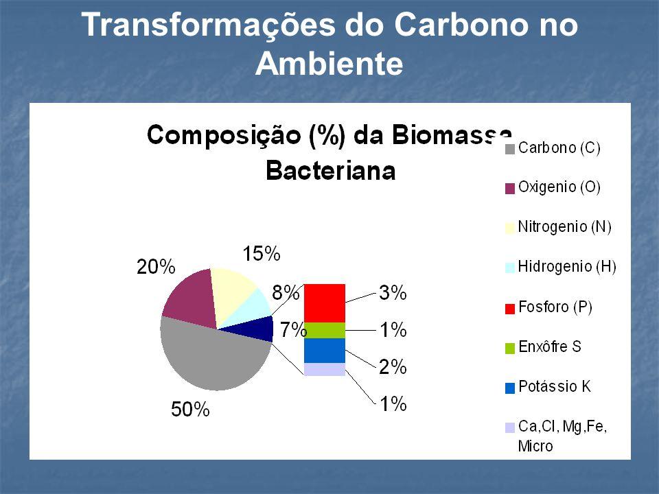 Carbono FotossínteseQuimiossintese RespiraçãoCombustão Mat.