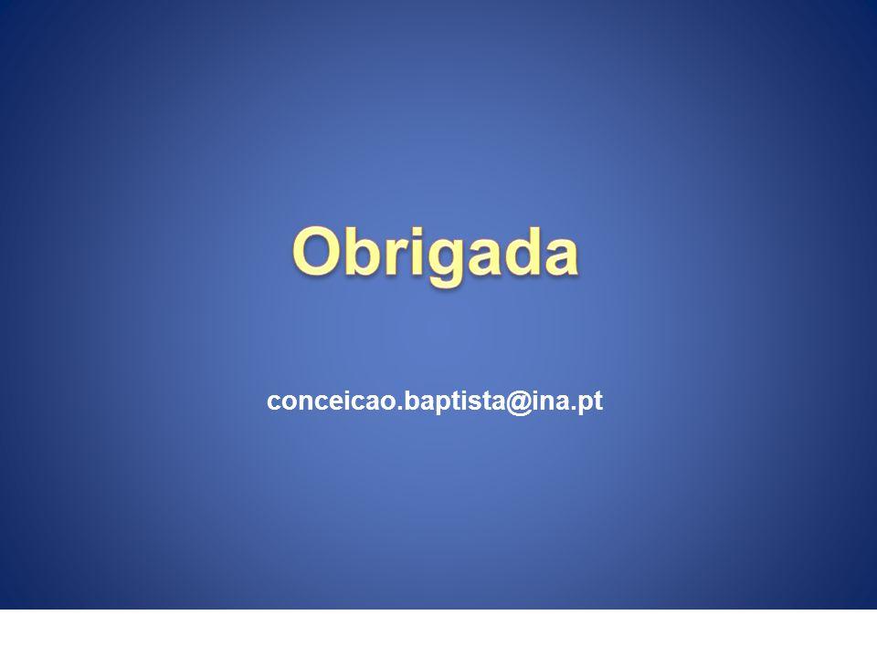 conceicao.baptista@ina.pt