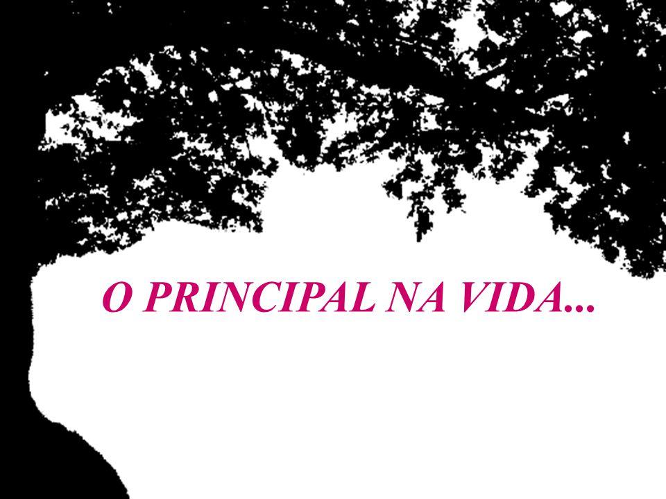 O PRINCIPAL NA VIDA...