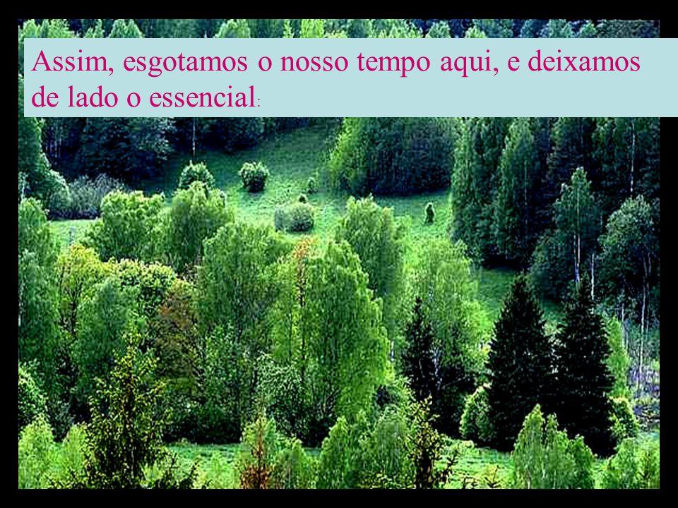 Mas a ganância, a riqueza, e os prazeres materiais nos fascinam tanto que o principal vai ficando sempre de lado...