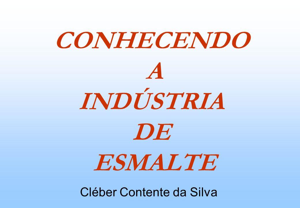 CONHECENDO A INDÚSTRIA DE ESMALTE Cléber Contente da Silva