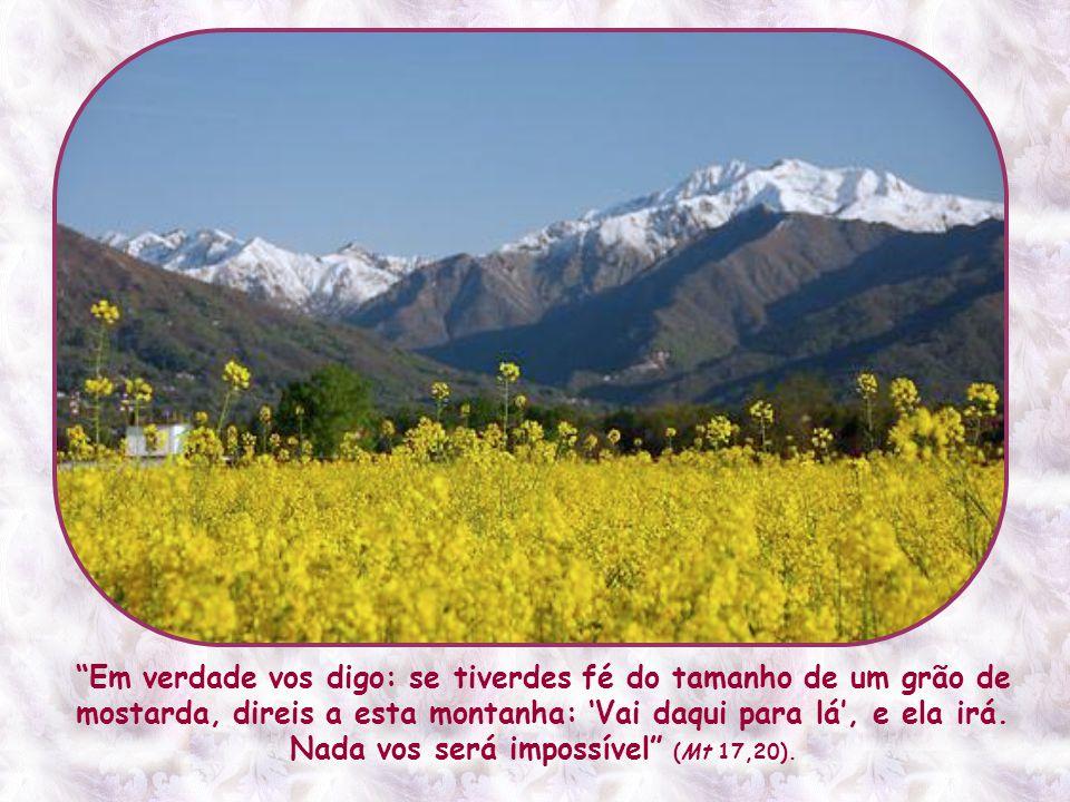 E essa fé – esta sim, capaz de transportar montanhas – não está reservada a uma ou outra pessoa extraordinária.