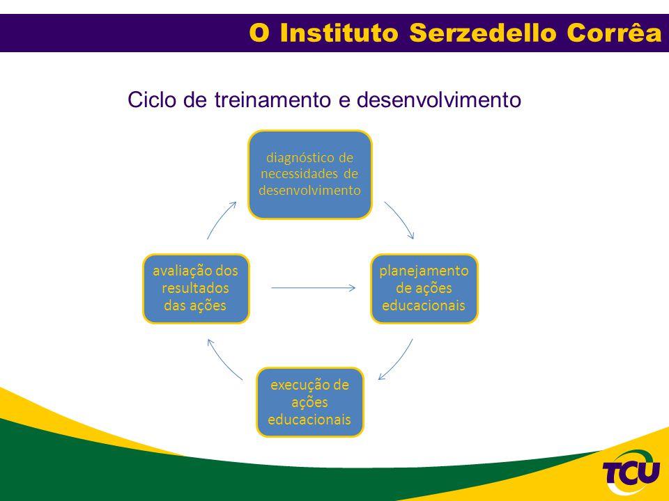 Ciclo de treinamento e desenvolvimento diagnóstico de necessidades de desenvolvimento planejamento de ações educacionais execução de ações educacionai