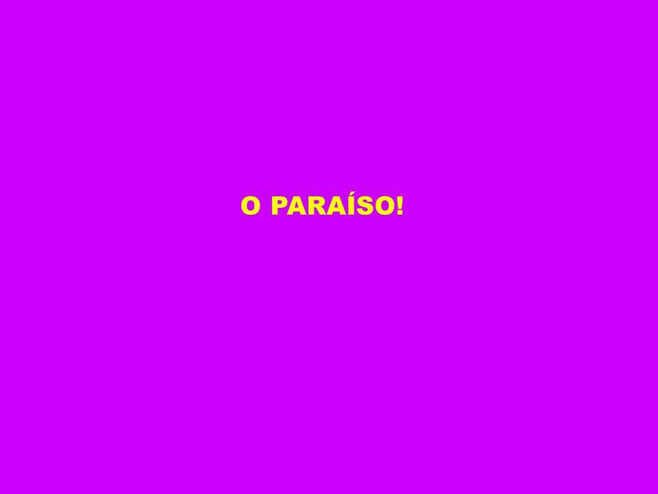 O PARAÍSO!