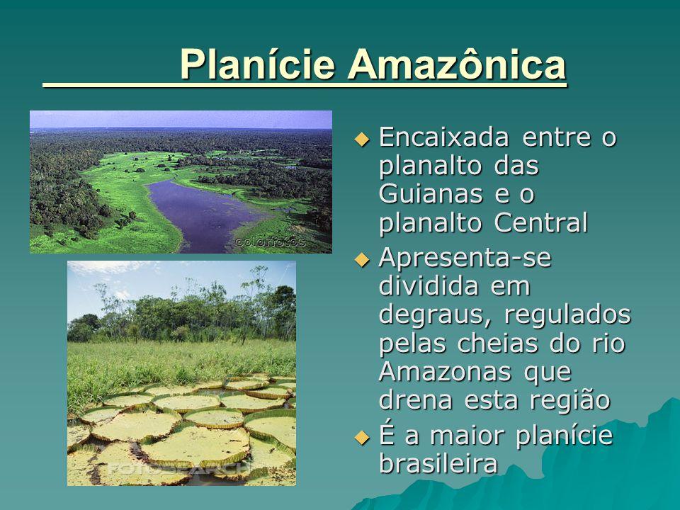 Planície Amazônica  Encaixada entre o planalto das Guianas e o planalto Central  Apresenta-se dividida em degraus, regulados pelas cheias do rio Ama