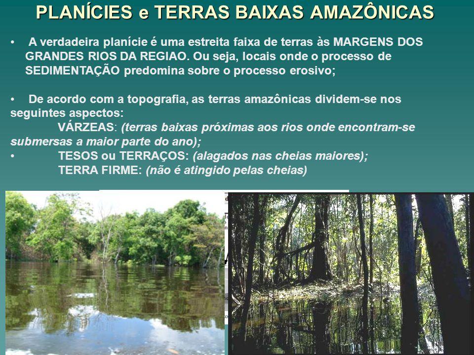 PLANÍCIES e TERRAS BAIXAS AMAZÔNICAS A verdadeira planície é uma estreita faixa de terras às MARGENS DOS GRANDES RIOS DA REGIAO. Ou seja, locais onde