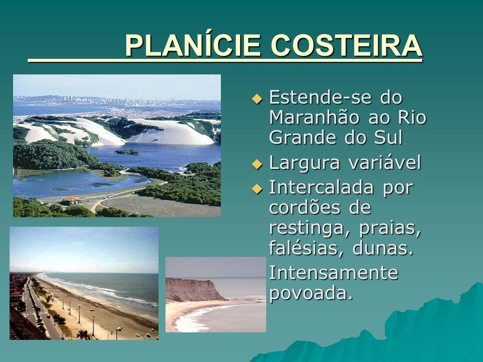PLANÍCIE COSTEIRA  Estende-se do Maranhão ao Rio Grande do Sul  Largura variável  Intercalada por cordões de restinga, praias, falésias, dunas.  I