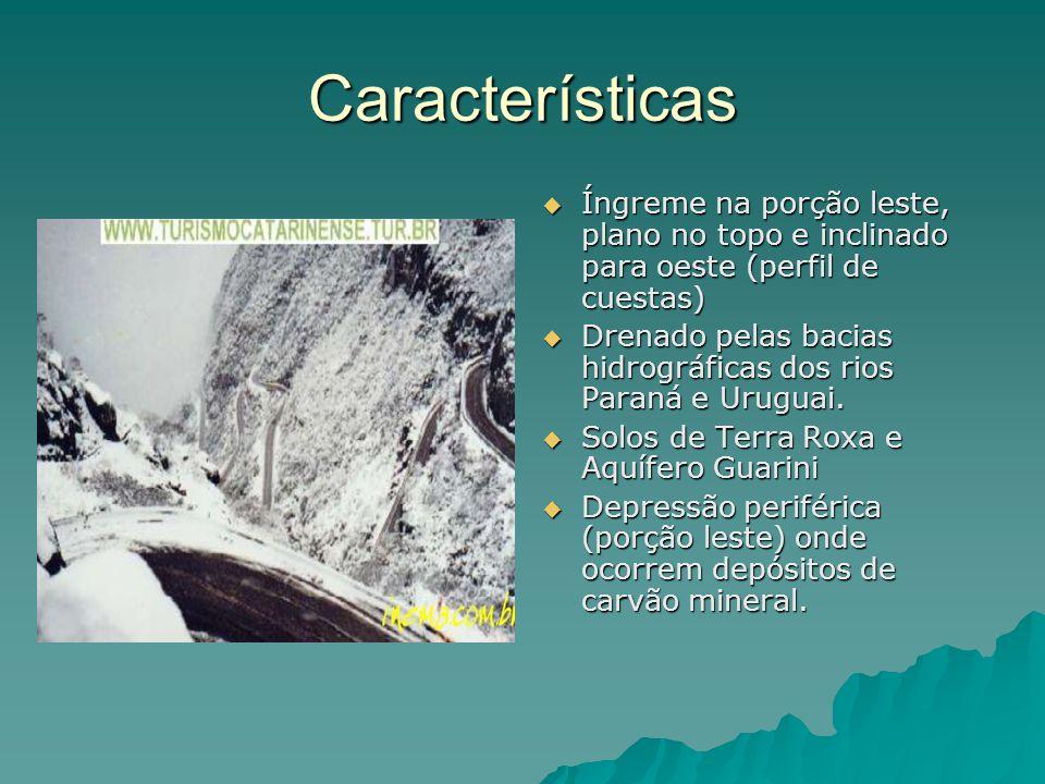 Características  Íngreme na porção leste, plano no topo e inclinado para oeste (perfil de cuestas)  Drenado pelas bacias hidrográficas dos rios Para