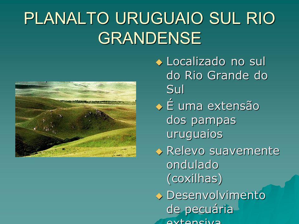 PLANALTO URUGUAIO SUL RIO GRANDENSE  Localizado no sul do Rio Grande do Sul  É uma extensão dos pampas uruguaios  Relevo suavemente ondulado (coxil