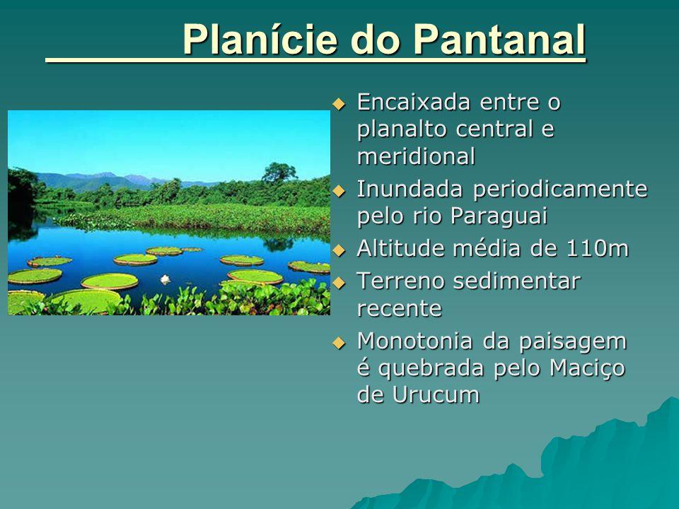 Planície do Pantanal  Encaixada entre o planalto central e meridional  Inundada periodicamente pelo rio Paraguai  Altitude média de 110m  Terreno