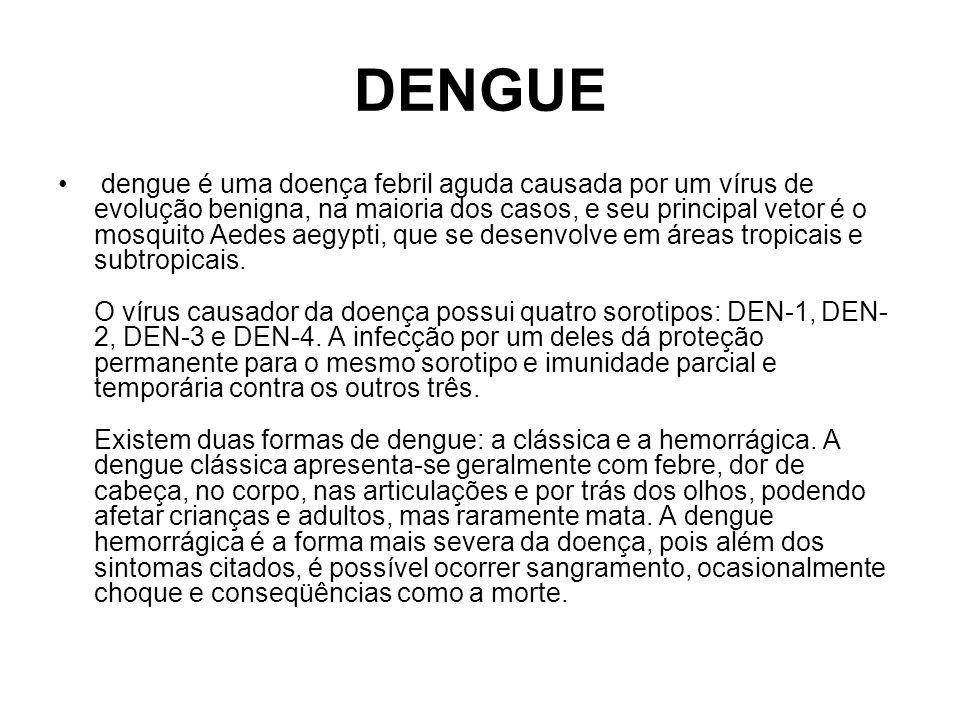 DENGUE dengue é uma doença febril aguda causada por um vírus de evolução benigna, na maioria dos casos, e seu principal vetor é o mosquito Aedes aegyp