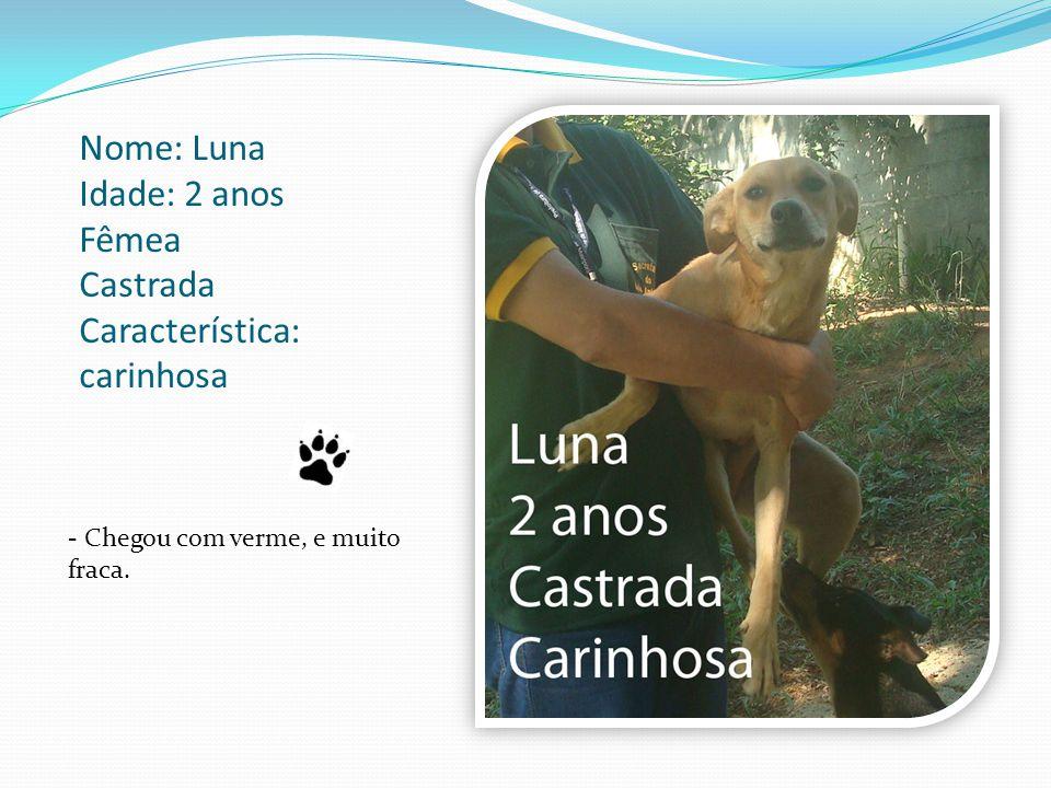 Nome: Luna Idade: 2 anos Fêmea Castrada Característica: carinhosa - Chegou com verme, e muito fraca.