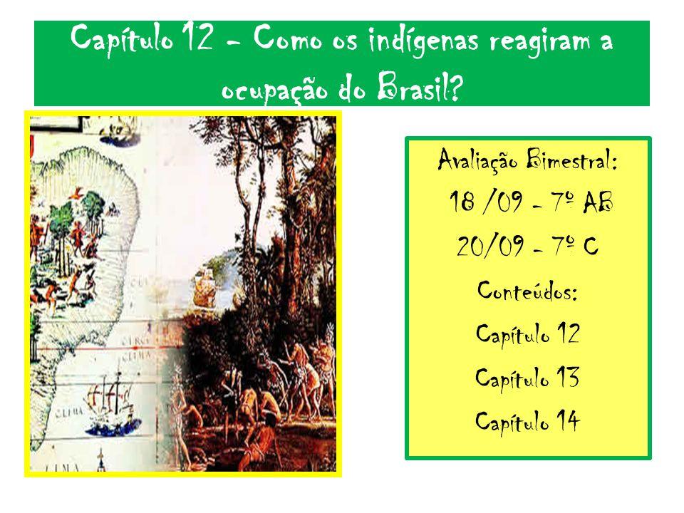 Capítulo 12 - Como os indígenas reagiram a ocupação do Brasil? Avaliação Bimestral: 18 /09 - 7º AB 20/09 - 7º C Conteúdos: Capítulo 12 Capítulo 13 Cap