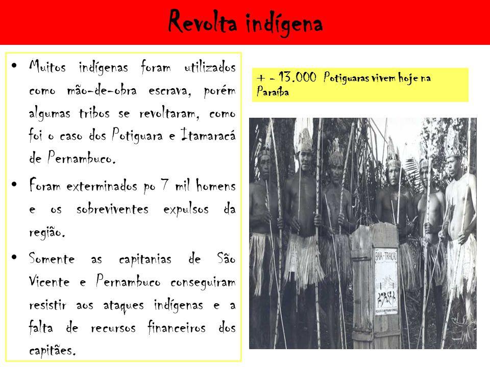 Revolta indígena Muitos indígenas foram utilizados como mão-de-obra escrava, porém algumas tribos se revoltaram, como foi o caso dos Potiguara e Itamaracá de Pernambuco.