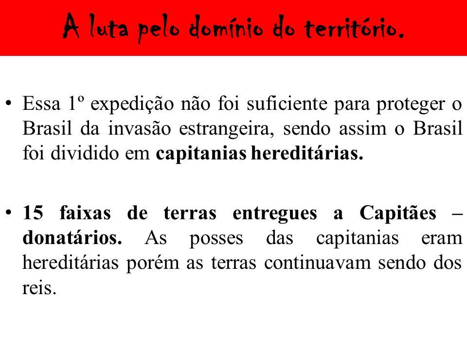 A luta pelo domínio do território. Essa 1º expedição não foi suficiente para proteger o Brasil da invasão estrangeira, sendo assim o Brasil foi dividi