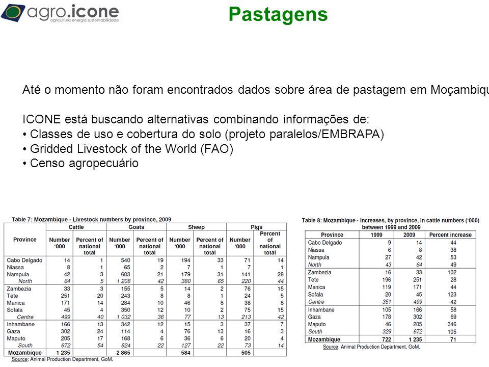 T Pastagens Até o momento não foram encontrados dados sobre área de pastagem em Moçambique. ICONE está buscando alternativas combinando informações de