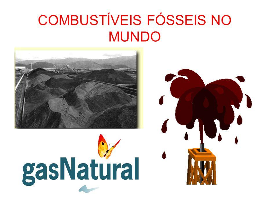 Utilização: Carvão: Siderurgia, termoeletricidade; Petróleo: Gasolina, querosene, óleo diesel, gás liquefeito, borracha sintética, asfalto, etc.