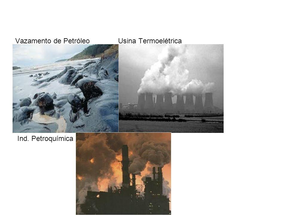 Vazamento de Petróleo Usina Termoelétrica Ind. Petroquímica