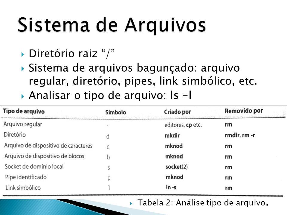  Diretório raiz /  Sistema de arquivos bagunçado: arquivo regular, diretório, pipes, link simbólico, etc.