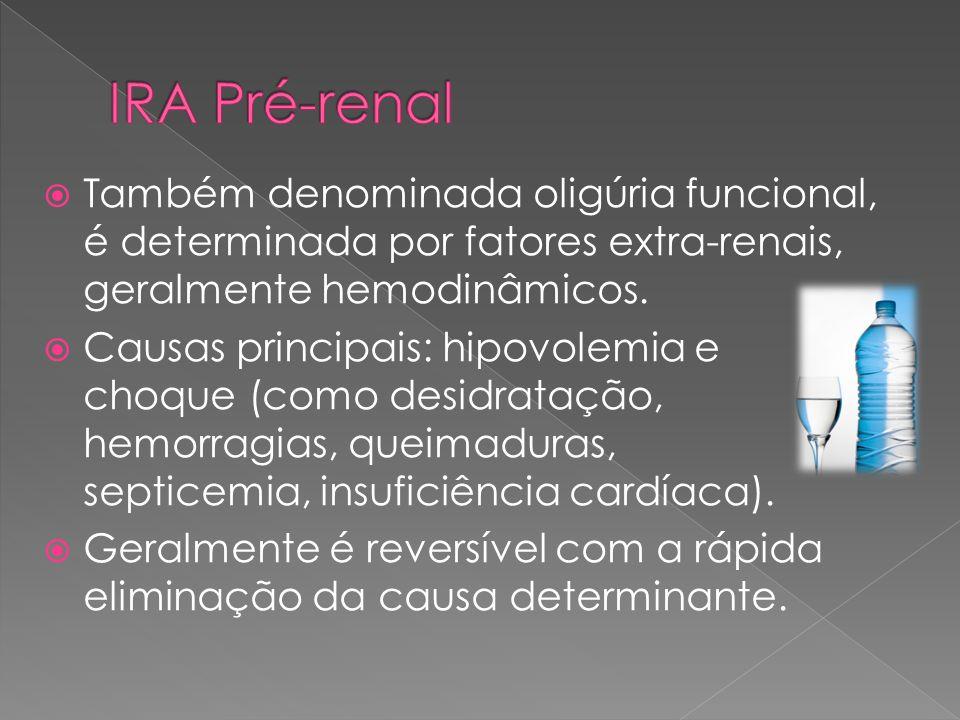  Surge por lesão do parênquima, que pode resultar da permanência dos fatores pré-renais ou da interveniência de outros como hemólise intravascular, mioglobinemia, complicações obstétricas, ação direta de nefrotoxinas, ou doenças primárias do parênquima.
