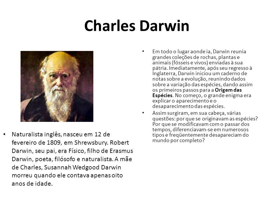 Charles Darwin Em todo o lugar aonde ia, Darwin reunia grandes coleções de rochas, plantas e animais (fósseis e vivos) enviadas à sua pátria. Imediata
