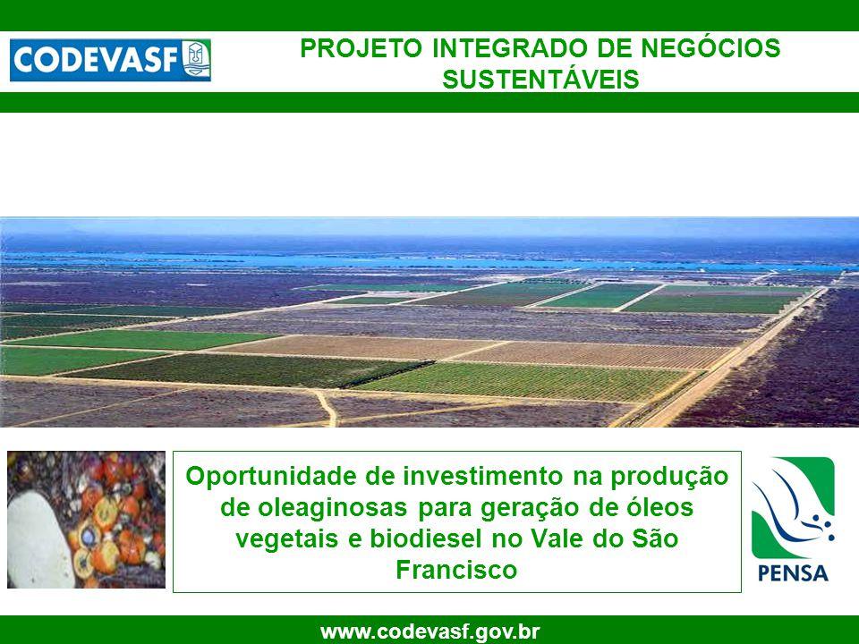 32 www.codevasf.gov.br Produção industrial de óleos, biodiesel e sub- produtos (ton) FONTE: PENSA 0,00 5.000,00 10.000,00 15.000,00 20.000,00 25.000,00 30.000,00 35.000,00 40.000,00 Produção total de óleos vegetais, biodiesel e sub-produtos (ton) Óleo de PalmaÓleo de PalmisteBiodieselBiodiesel AGLTorta Ano 1 Ano 2 Ano 3 Ano 4 Ano 5 Ano 6 Ano 7 Ano 8 Ano 9 Ano 10 Ano 11 Ano 12 Ano 13 Ano 14 Ano 15 Ano 16 Ano 17 Ano 18 Ano 19 Ano 20