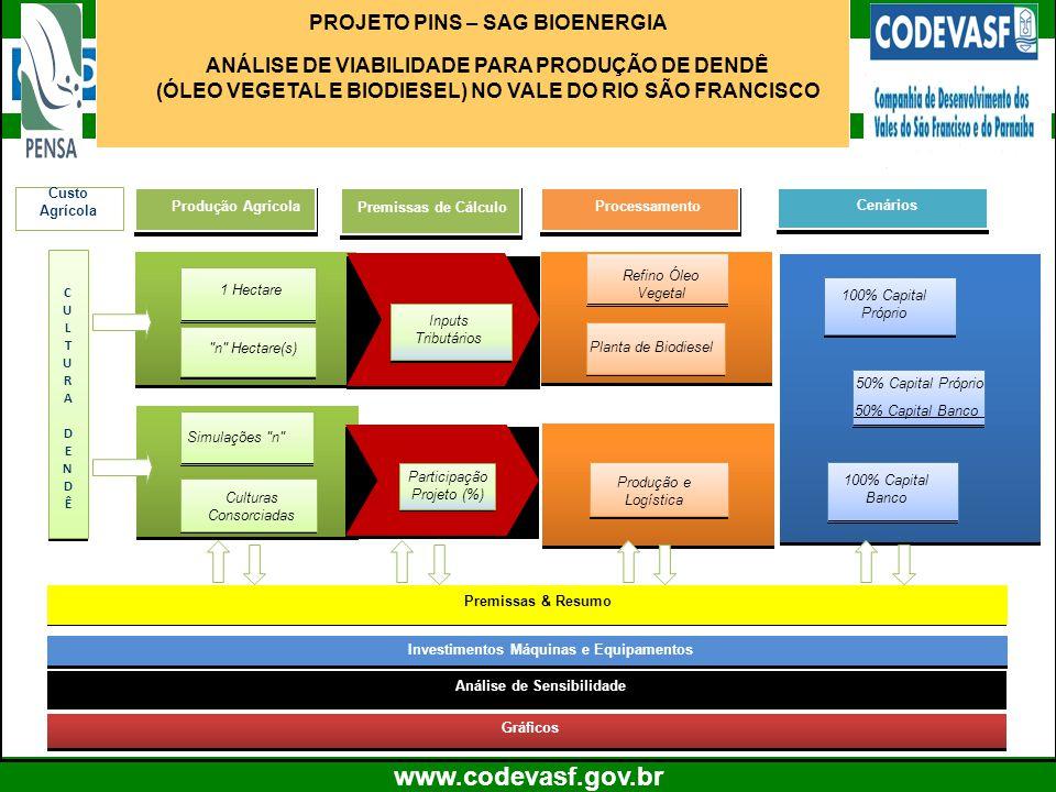 14 www.codevasf.gov.br Produção AgrícolaProcessamento PROJETO PINS – SAG BIOENERGIA ANÁLISE DE VIABILIDADE PARA PRODUÇÃO DE DENDÊ (ÓLEO VEGETAL E BIOD