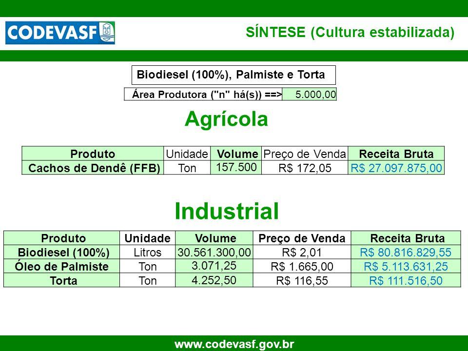 27 www.codevasf.gov.br SÍNTESE (Cultura estabilizada) Agrícola Industrial ProdutoUnidade VolumePreço de Venda Receita Bruta Biodiesel (100%)Litros30.5
