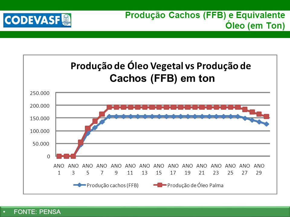28 www.codevasf.gov.br Produção Cachos (FFB) e Equivalente Óleo (em Ton) FONTE: PENSA 0 50.000 100.000 150.000 200.000 250.000 ANO 1 3 5 7 9 11 ANO 13