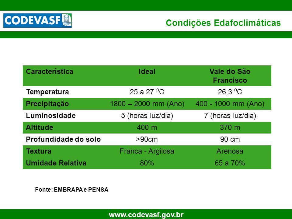40 www.codevasf.gov.br Condições Edafoclimáticas Fonte: EMBRAPA e PENSA CaracterísticaIdealVale do São Francisco Temperatura25 a 27 o C26,3 o C Precip