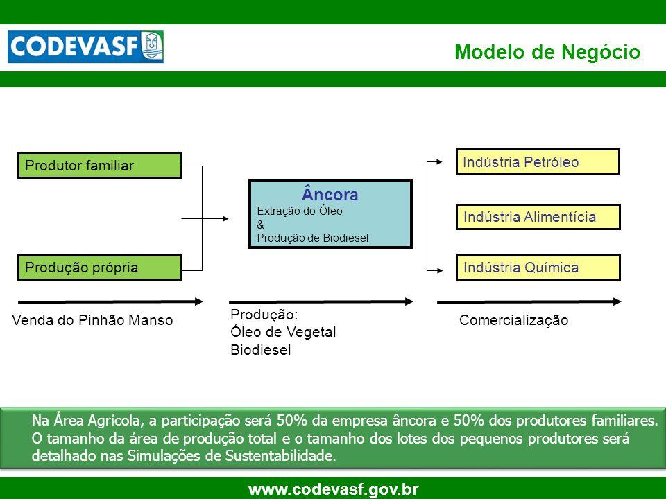 48 www.codevasf.gov.br Produtor familiar Produção própria Âncora Extração do Óleo & Produção de Biodiesel Indústria Alimentícia Indústria Química Vend