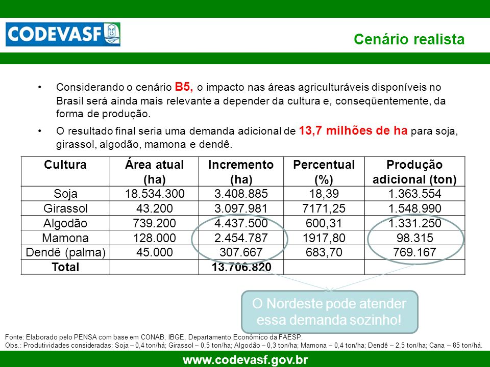 16 www.codevasf.gov.br PREMISSAS Dados ==> Baseado em EMBRAPA CONSIDERAÇÕES DENDÊ DE PALMA US$ 1,00 ==>R$ 1,85 Área Produtora ( n há(s)) ==>5.000,00 CULTURAS CONSORCIADAS Seleção da Cultura ======> Área Produtoras ( n há(s)) ==>4500,00 Fator de Correção da Área Produtora10% Banana Abacaxi Mandioca FONTE PRINCIPAL DE RECEITA ==>3 3RECEITAS POSSÍVEIS 1Óleo Palma; Palmiste; Torta 2Biodiesel (50%); Palma (50%); Palmiste; Torta 3Biodiesel (100%), Palmiste e Torta 4Palma; Palmiste; Torta; Biodiesel (AGL) Opções de receitas disponíveis IMPORTANTE Receita obtida a partir da soma das vendas do Biodiesel gerado pelo óleo vegetal produzido e Torta TAXA MÍNIMA DE ATRATIVIDADE ==> 15%