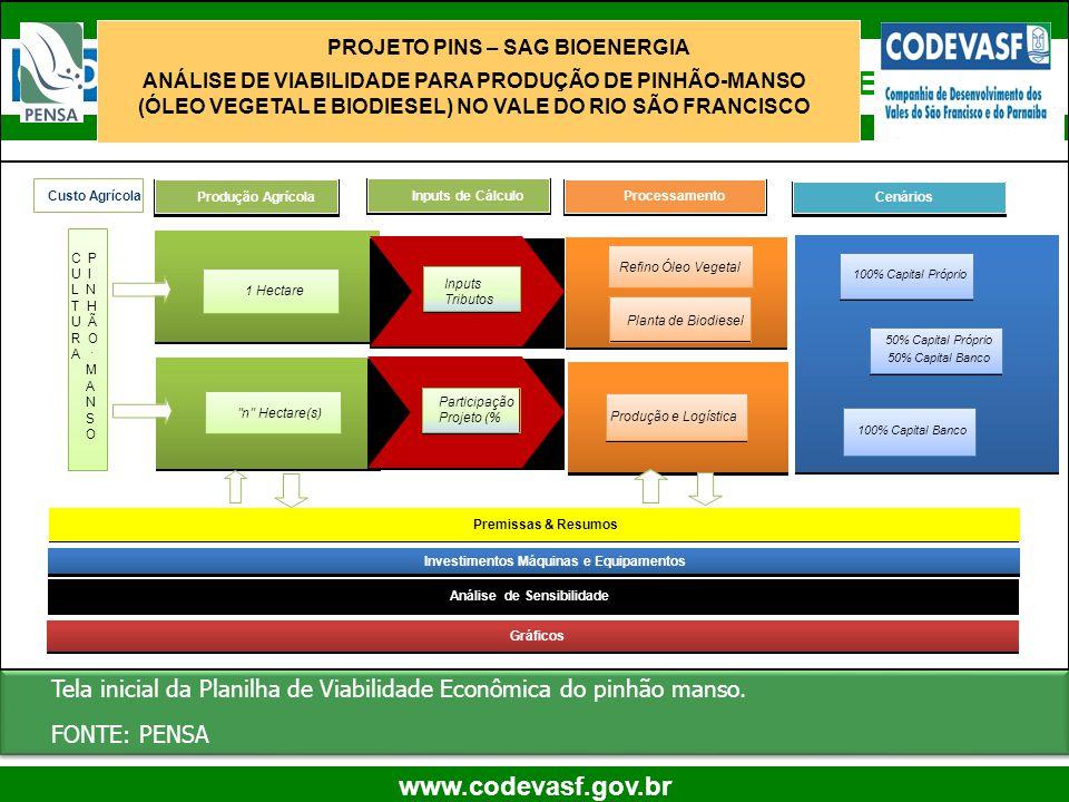 52 www.codevasf.gov.br Planilha de Viabilidade Econômica Tela inicial da Planilha de Viabilidade Econômica do pinhão manso. FONTE: PENSA Tela inicial