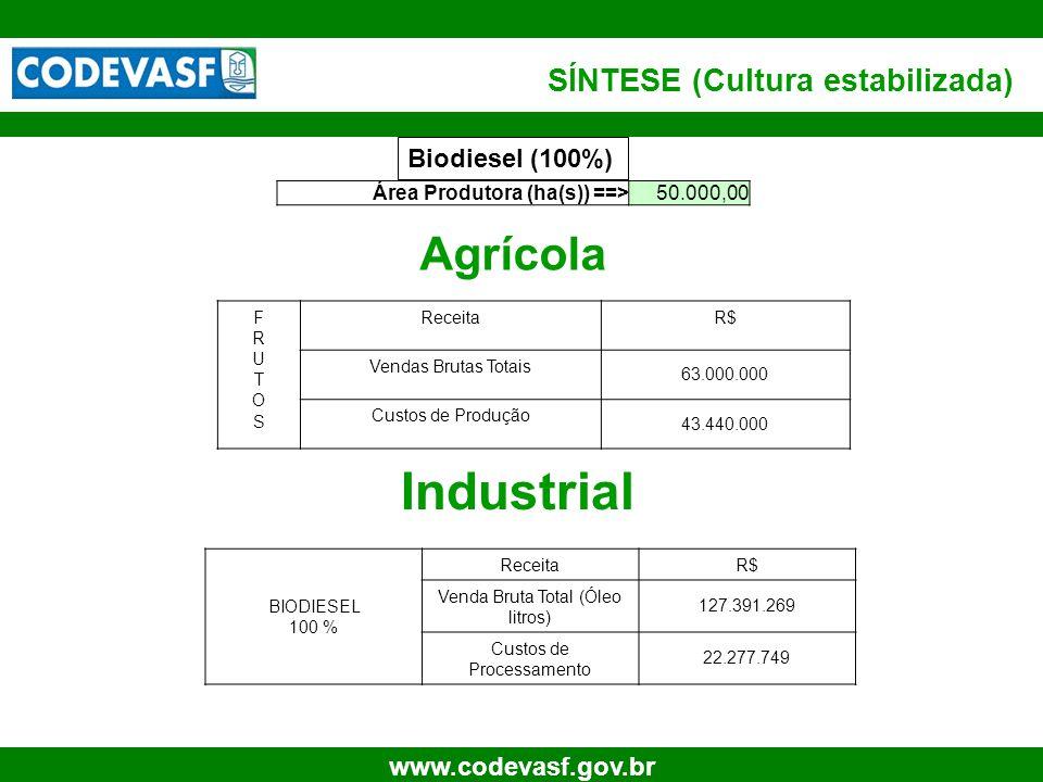 58 www.codevasf.gov.br SÍNTESE (Cultura estabilizada) Biodiesel (100%) Área Produtora (ha(s)) ==>50.000,00 Agrícola Industrial FRUTOSFRUTOS ReceitaR$