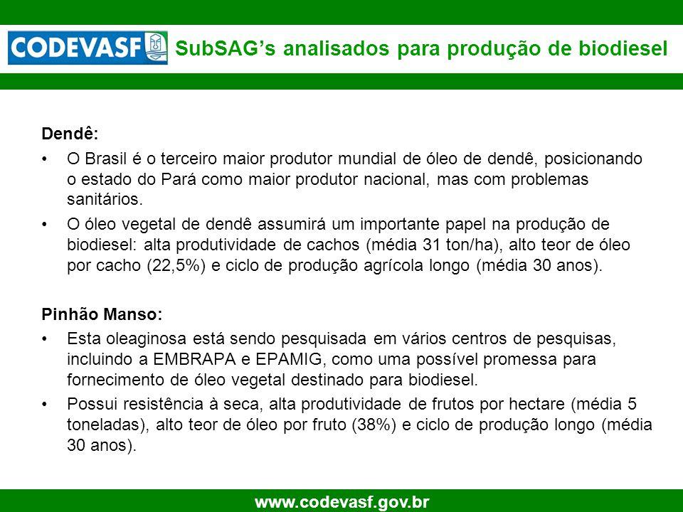 6 www.codevasf.gov.br SubSAG's analisados para produção de biodiesel Dendê: O Brasil é o terceiro maior produtor mundial de óleo de dendê, posicionand