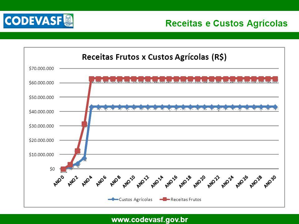 61 www.codevasf.gov.br Receitas e Custos Agrícolas $0 $10.000.000 $20.000.000 $30.000.000 $40.000.000 $50.000.000 $60.000.000 $70.000.000 Receitas Fru