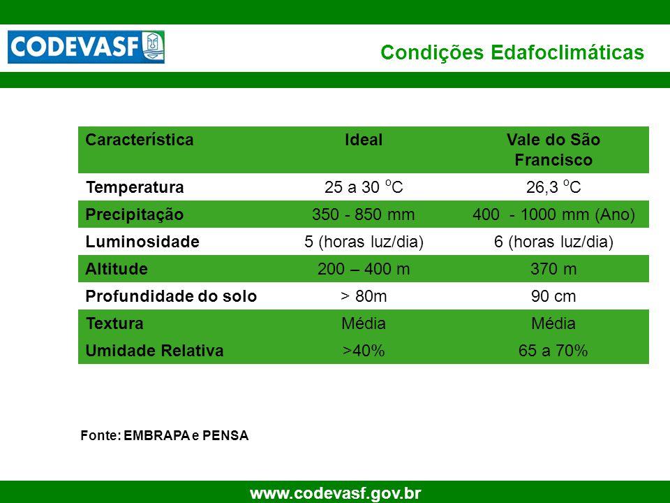 69 www.codevasf.gov.br Condições Edafoclimáticas Fonte: EMBRAPA e PENSA CaracterísticaIdealVale do São Francisco Temperatura25 a 30 o C26,3 o C Precip