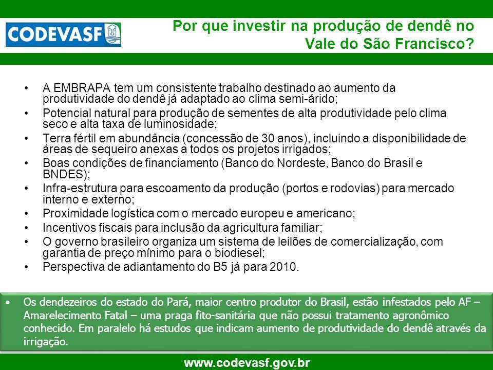 8 www.codevasf.gov.br A EMBRAPA tem um consistente trabalho destinado ao aumento da produtividade do dendê já adaptado ao clima semi-árido; Potencial