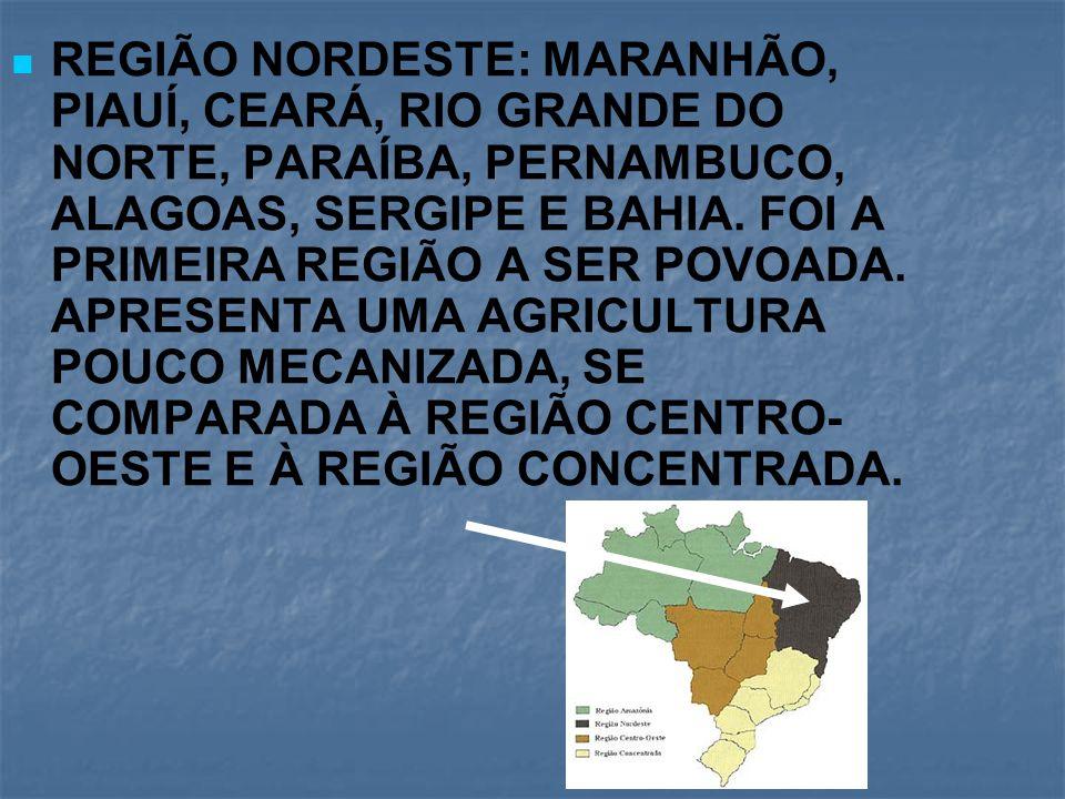 REGIÃO NORDESTE: MARANHÃO, PIAUÍ, CEARÁ, RIO GRANDE DO NORTE, PARAÍBA, PERNAMBUCO, ALAGOAS, SERGIPE E BAHIA. FOI A PRIMEIRA REGIÃO A SER POVOADA. APRE