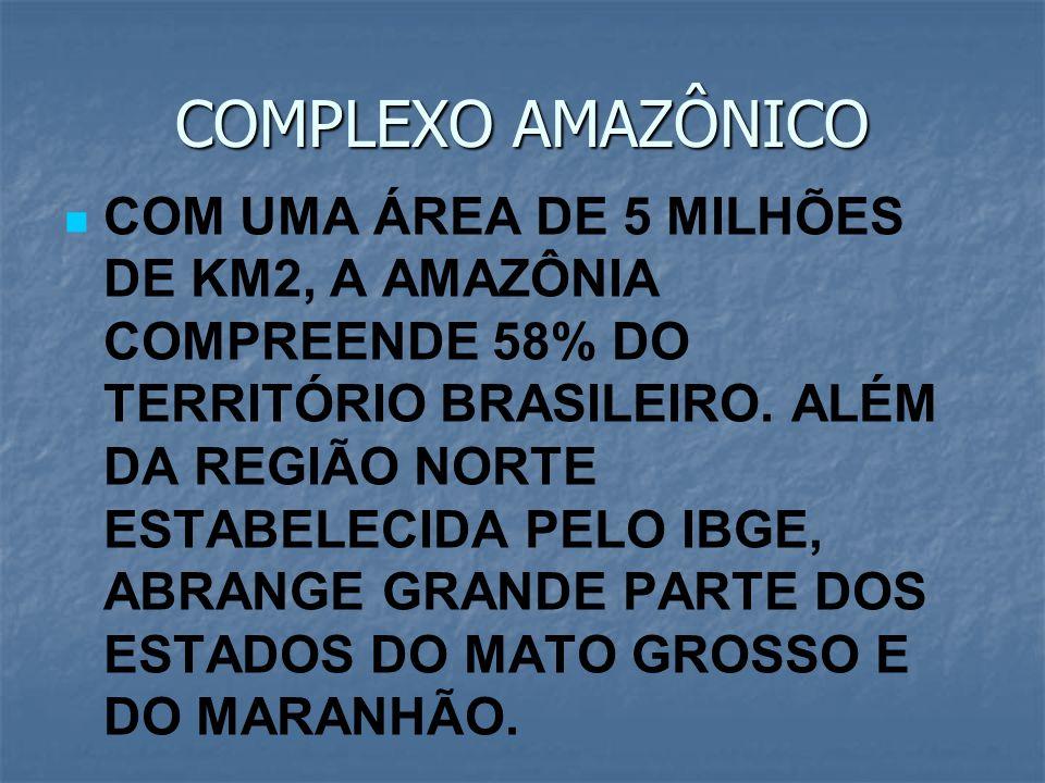 COMPLEXO AMAZÔNICO COM UMA ÁREA DE 5 MILHÕES DE KM2, A AMAZÔNIA COMPREENDE 58% DO TERRITÓRIO BRASILEIRO. ALÉM DA REGIÃO NORTE ESTABELECIDA PELO IBGE,