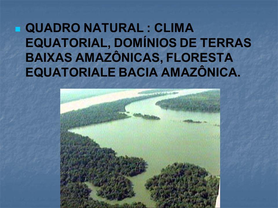 QUADRO NATURAL : CLIMA EQUATORIAL, DOMÍNIOS DE TERRAS BAIXAS AMAZÔNICAS, FLORESTA EQUATORIALE BACIA AMAZÔNICA.