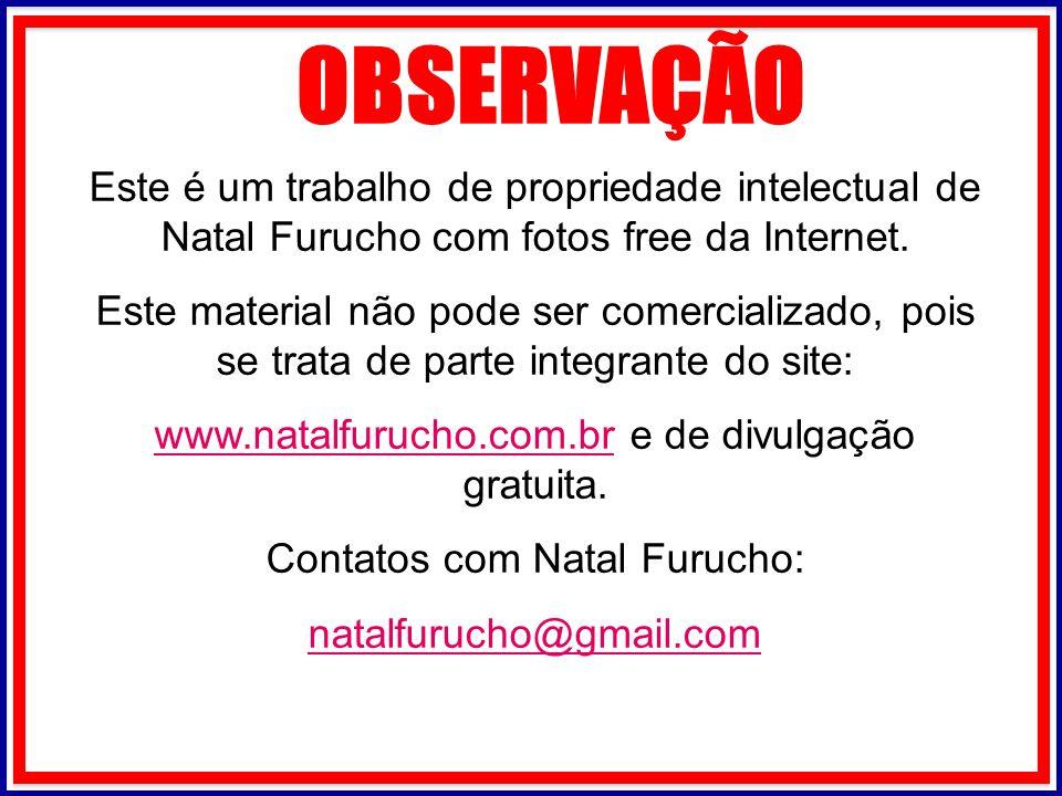 OBSERVAÇÃO Este é um trabalho de propriedade intelectual de Natal Furucho com fotos free da Internet.