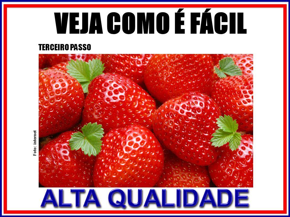 VEJA COMO É FÁCIL TERCEIRO PASSO Foto: internet
